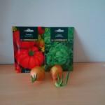 Planter des tomates, laitues et des oignons en appartement