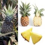 L'ananas pourquoi aide-t-il à maigrir ?