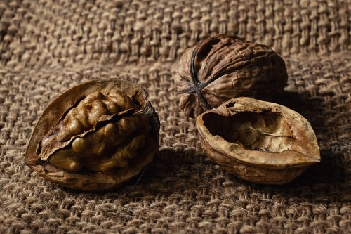 Adopter le régime paléo : manger des noix