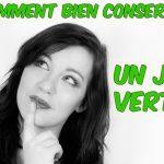 Conserver un jus vert : mes 12 conseils