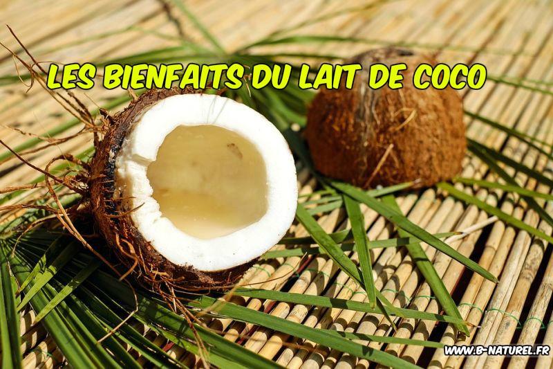 les avantages du lait de coco